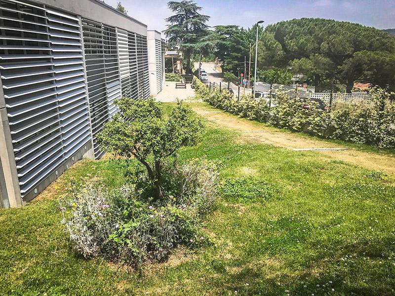 Escola verda i sostenibilitat - Exteriors Escola Ginebró